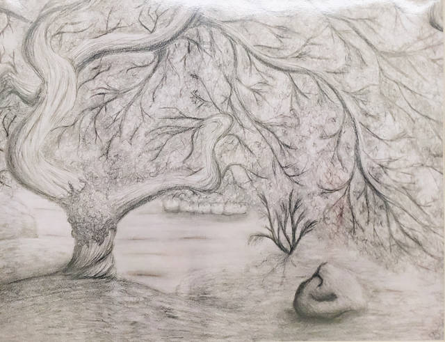 The Ohio House of Representatives, Ohio Arts Council, and Ohio Art Education Association joined together for the third annual student exhibition. Dylan Claude, a National Trail student, was named winner for the 43rd District.